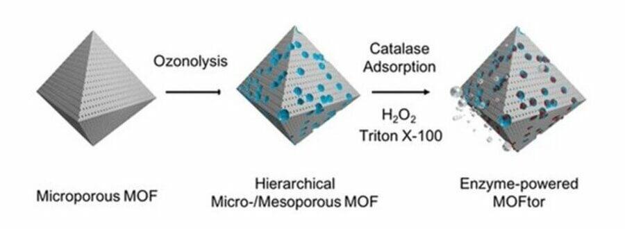 Investigadors de l'IBEC desenvolupen micromotors impulsats per enzims basats en materials organo-metàl·lics porosos