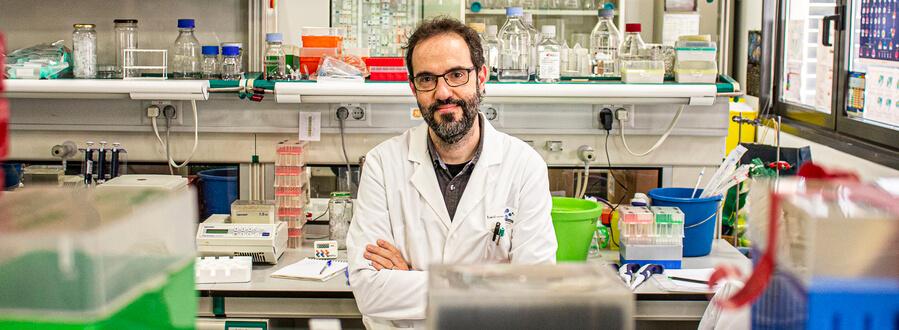 El Laboratori de Dinàmica Metabòlica en Càncer de la UB s'estableix al Parc Científic de Barcelona
