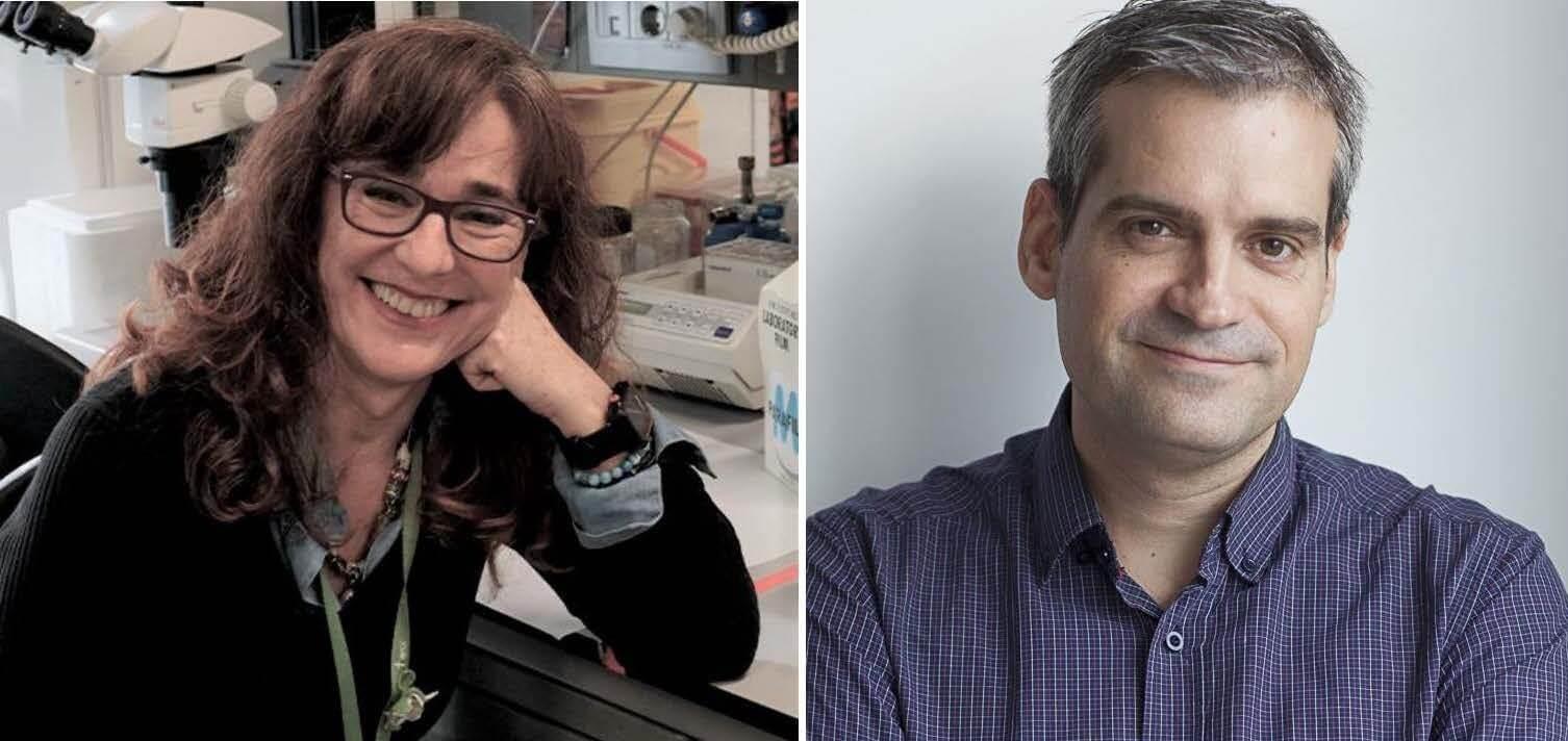 La Dra. Elisa Martí i el Dr. Toni Gabaldón han estat nomenats membres d'EMBO