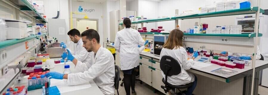 Un estudi d'Eugin revela que la qualitat dels òvuls està directament relacionada amb l'activitat mitocondrial